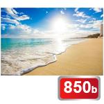 50 000 Kč na zájezd na Bahamy