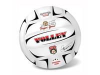 48820 - Volejbalový míč 21 cm