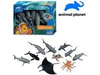 07541 - Zvířátka - mořská, 10 ks, mobilní aplikace pro zobrazení zvířátek, 16,2 cm