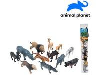 07545 - Zvířátka v tubě - safari,  4 - 8 cm, mobilní aplikace pro zobrazení zvířátek, 12  ks