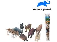 07546 - Zvířátka  v tubě - lesní, 4 - 9 cm, mobilní aplikace pro zobrazení zvířátek,  8 ks