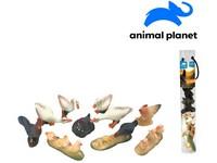 07549 - Zvířátka v tubě - farma,  5 - 8 cm, mobilní aplikace pro zobrazení zvířátek, 10 ks