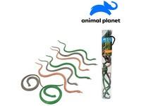 07555 - Zvířátka v tubě - hadi, 6 - 12 cm, mobilní aplikace pro zobrazení zvířátek, 8 ks